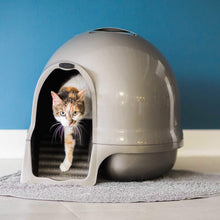 Load image into Gallery viewer, Cat using Petmate Booda Cleanstep Litter Dome va0