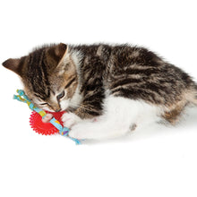 Load image into Gallery viewer, Petstages Kitty Chew Wheel Cat Toy
