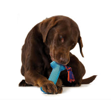 Load image into Gallery viewer, Petstages Orka Bone Chew Toy