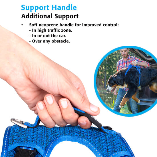 Explore Harness Support Handle Info