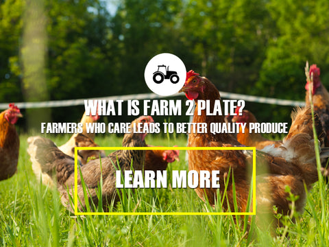 Farm 2 Plate - hello happy fun correct grow produce to plate kelly cube