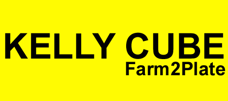 Kelly Cube Fun & Healthy Dinner Box Meal Kits - Multi Award Winning Melbourne Sydney