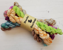 Load image into Gallery viewer, MISFIT MINIS 4PLY.SKEINS