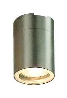 Globo Lighting 3202 Outdoor Lamp Stainless Steel 1 x 35w GU10 IP44