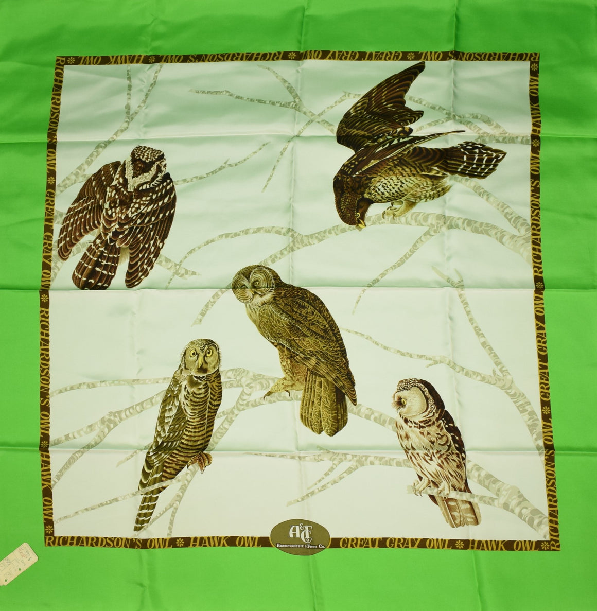 "Abercrombie & Fitch ""Owl"" Silk Scarf New w/ Tag!"