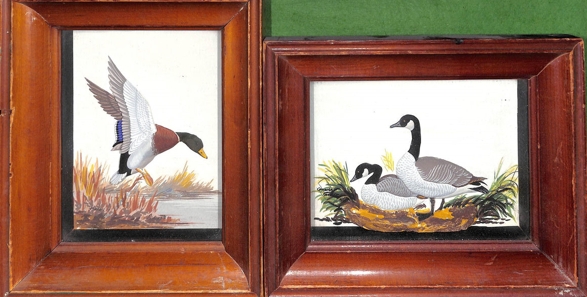 "Joseph Q. Whipple, Sr. Shadowbox Paintings ""Mallard"" and ""Canada Geese"""