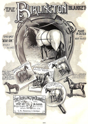 """Mosemans': Illustrated Guide for Purchasers of Horse Furnishing Goods"""