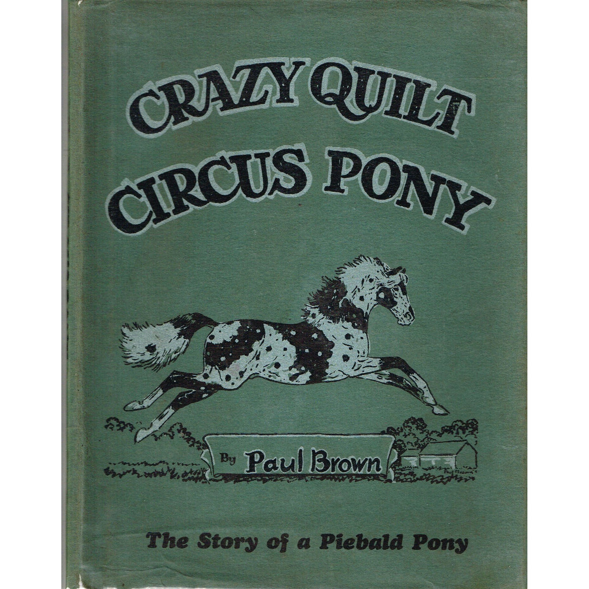 Crazy Quilt Circus Pony: The story of a Piebald Pony