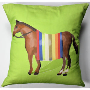 Apple Green Multicolour Stripe Horse Blanket Pillow