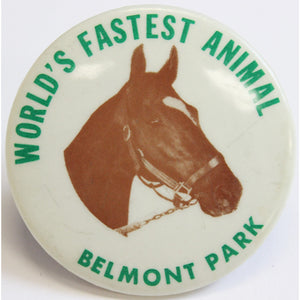 World's Fastest Animal Belmont Park