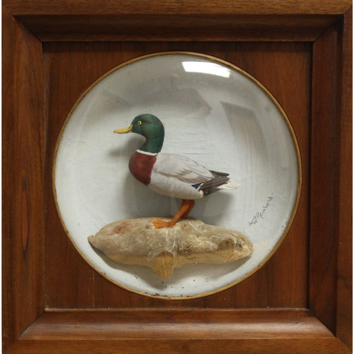 William Reinbold Mallard Decoy Diorama