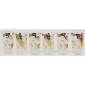 Set of 6 Florida Frosted Glasses