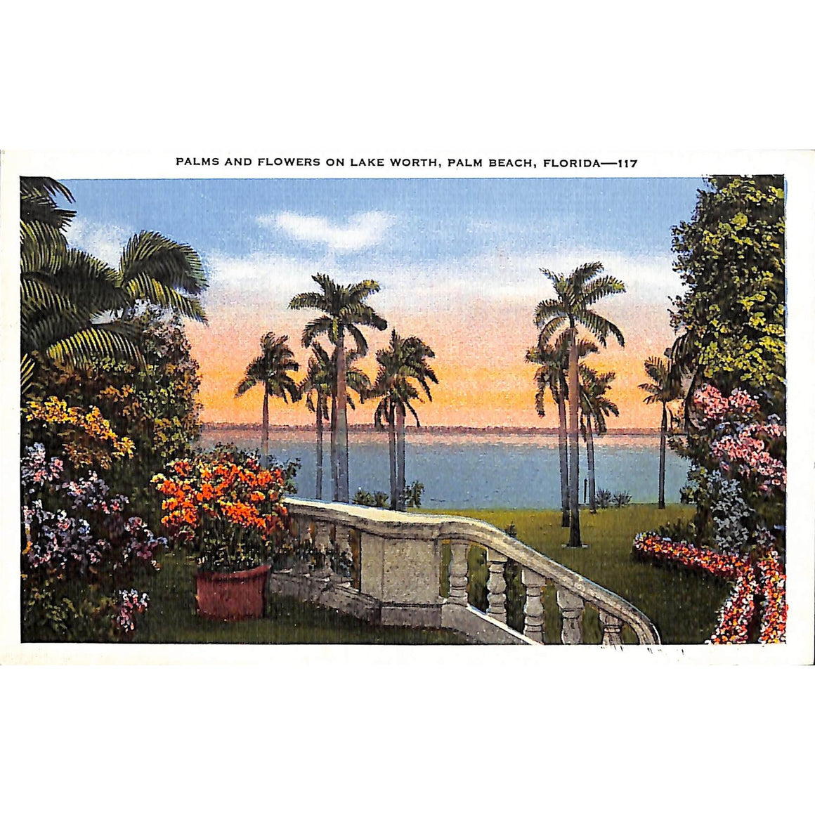 Palms and Flowers on Lake Worth, Palm Beach Post Card