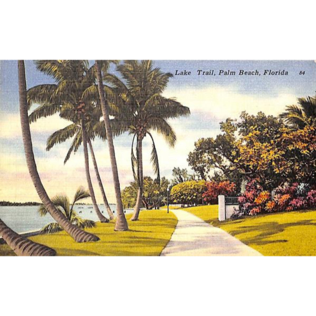 Lake Trail, Palm Beach Post Card