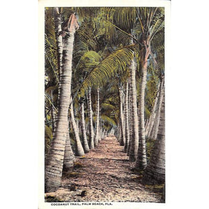 Cocoanut Trail Palm Beach Post Card