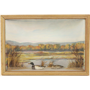 Duck Marsh Watercolour Diorama