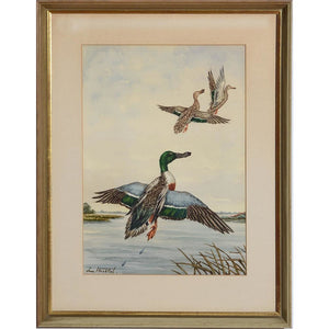 Ducks in Flight, 5 Watercolour by Jean Herblet from the CZ Guest estate