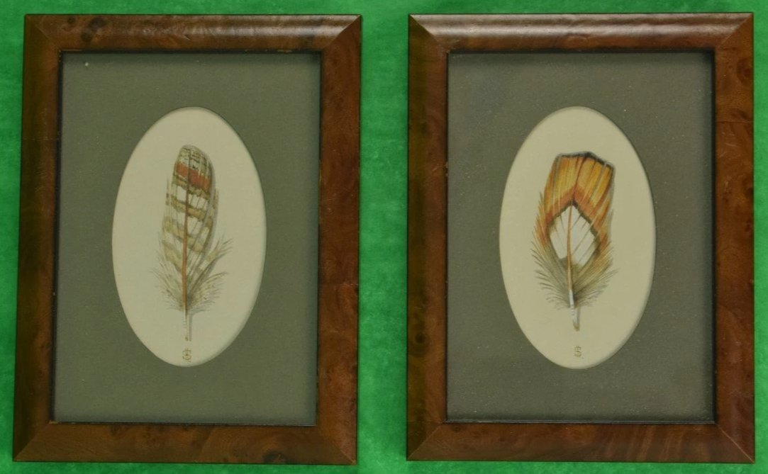 Pair of Pheasant Feathers Watercolours by Harry Spencer of Empingham, Eng in Birdseye maple Frames