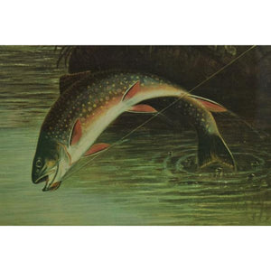 Authorized Orvis Dealer Leaping Trout Color-Plate by S.A Kilbourne 1878