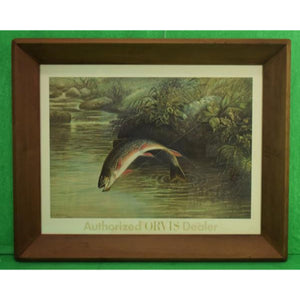 'Authorized Orvis Dealer Leaping Trout Color-Plate by S.A Kilbourne 1878'