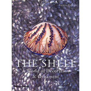 The Shell: A World Of Decoration & Ornament