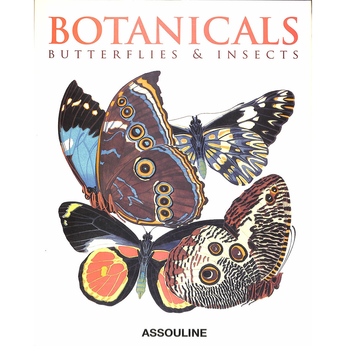 Botanicals: Butterflies & Insects