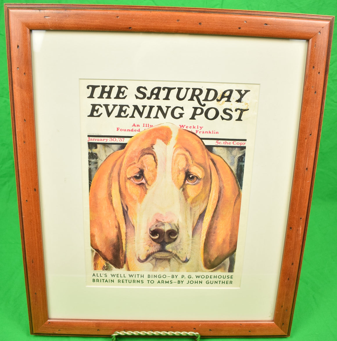 The Saturday Evening Post January 30, '37 Magazine Cover of a Fox-Hound by Paul Branson