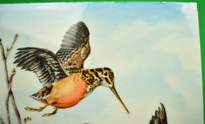 Frank Vosmansky Hand-Painted Woodcock Tile