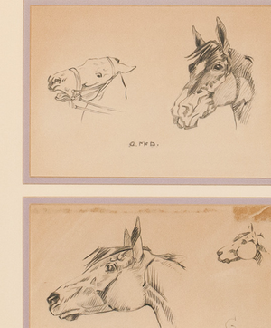 Horse Heads Pencil Drawing