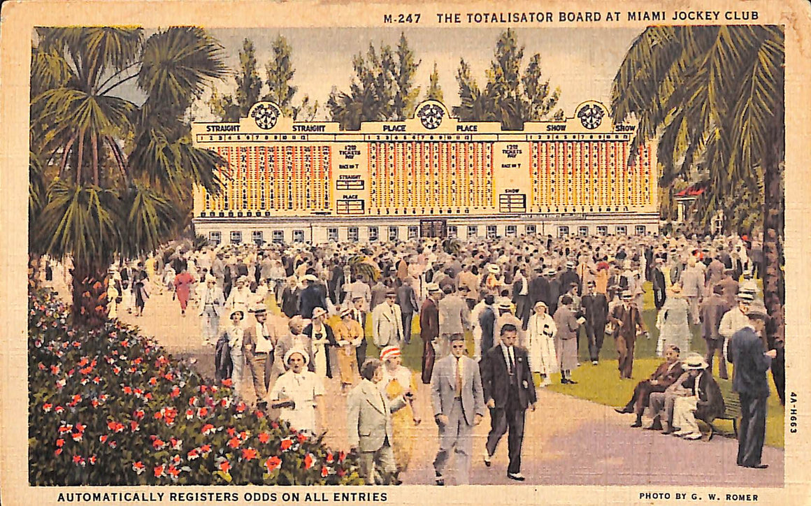 """The Totalisator Board at Miami Jockey Club"" Postcard"