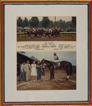 Country Winner's Circle Custom Racing Stripes Framed Color C81 Photo