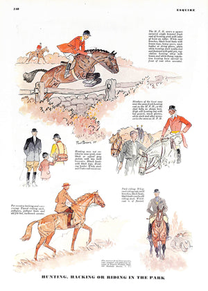 Hunting, Hacking or Riding in The Park