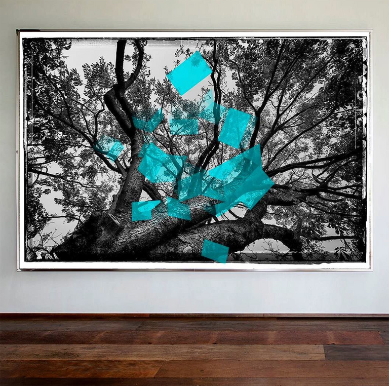 Mireille Roobaert Artist Contemporary Art Photography Atomisme Bleu trees Chromaluxe Alexia Werrie Gallery Art in a House