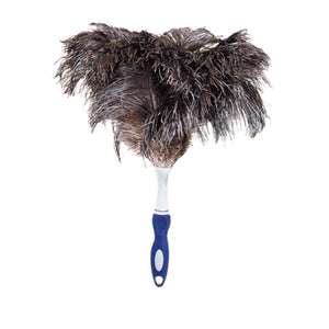 Ostrich Feather Duster with Handle, 15 Inch