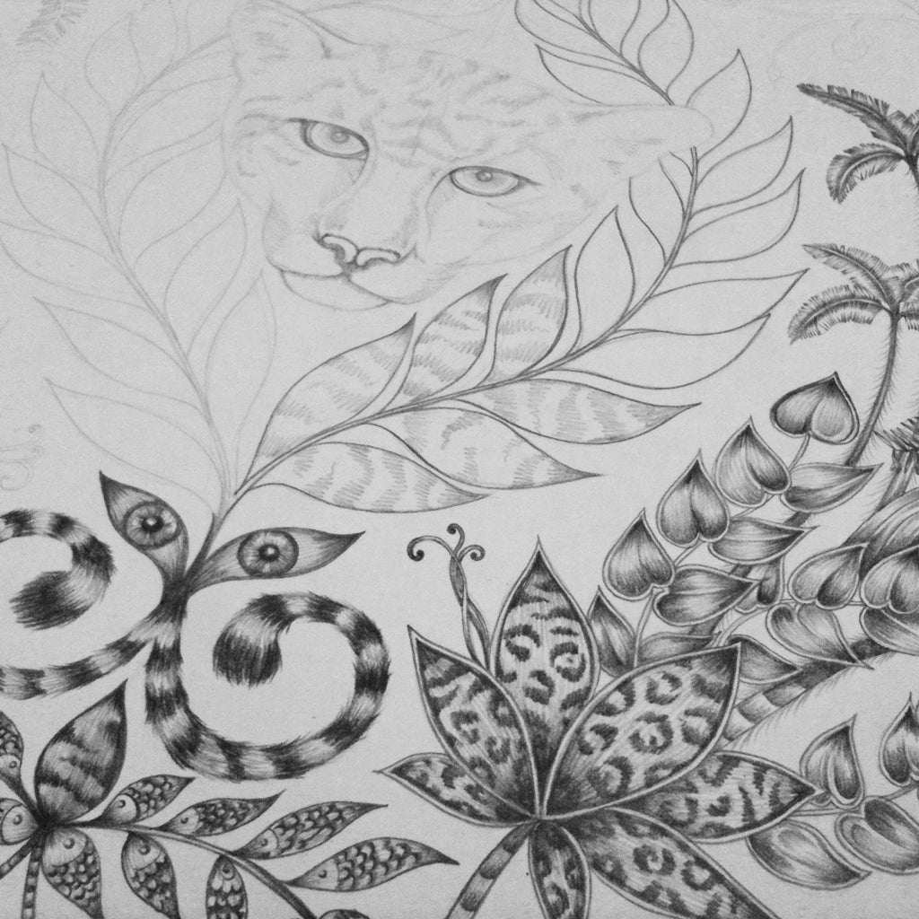 Amazon pencil drawing detail emma j shipley