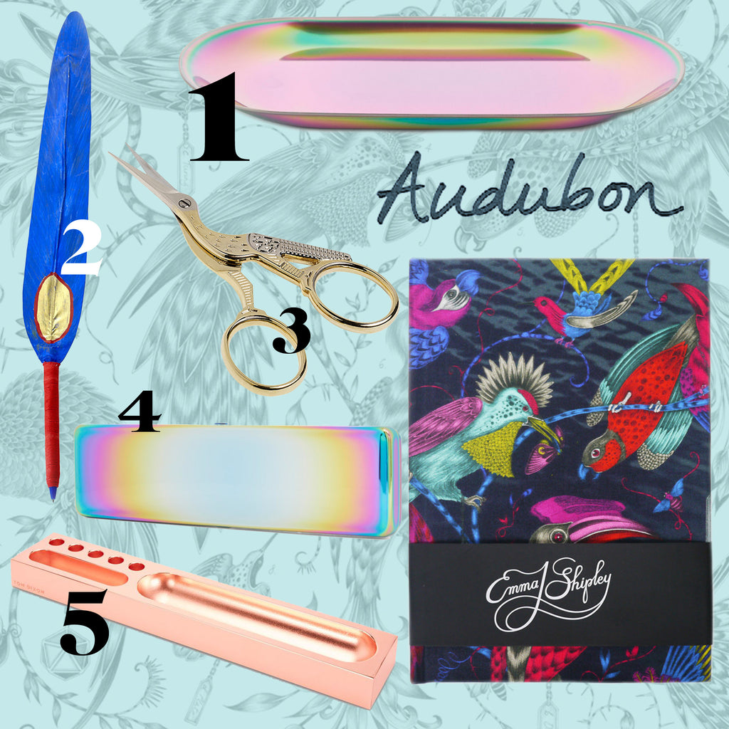 The Emma J Shipley Audubon Silk Notebook, paired with bright, bold and unique office supplies.