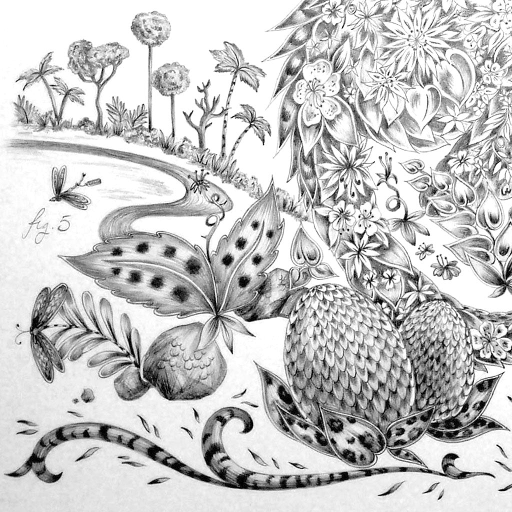 Emma J Shipley Dragon eggs detail in pencil