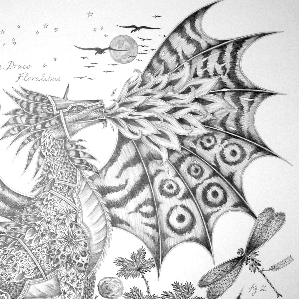 Emma J Shipley's Drakon drawing, detail of wings.