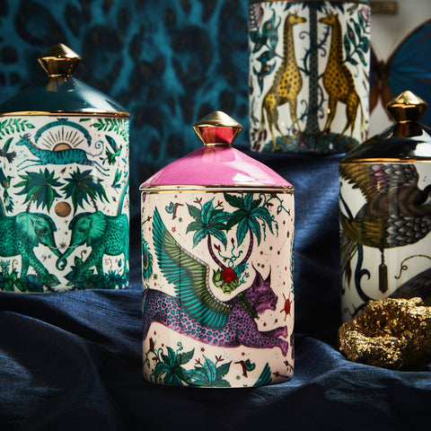A selection of the final Home Fragrance designs including Lynx, Zambezi, Audubon and Kruger in the background