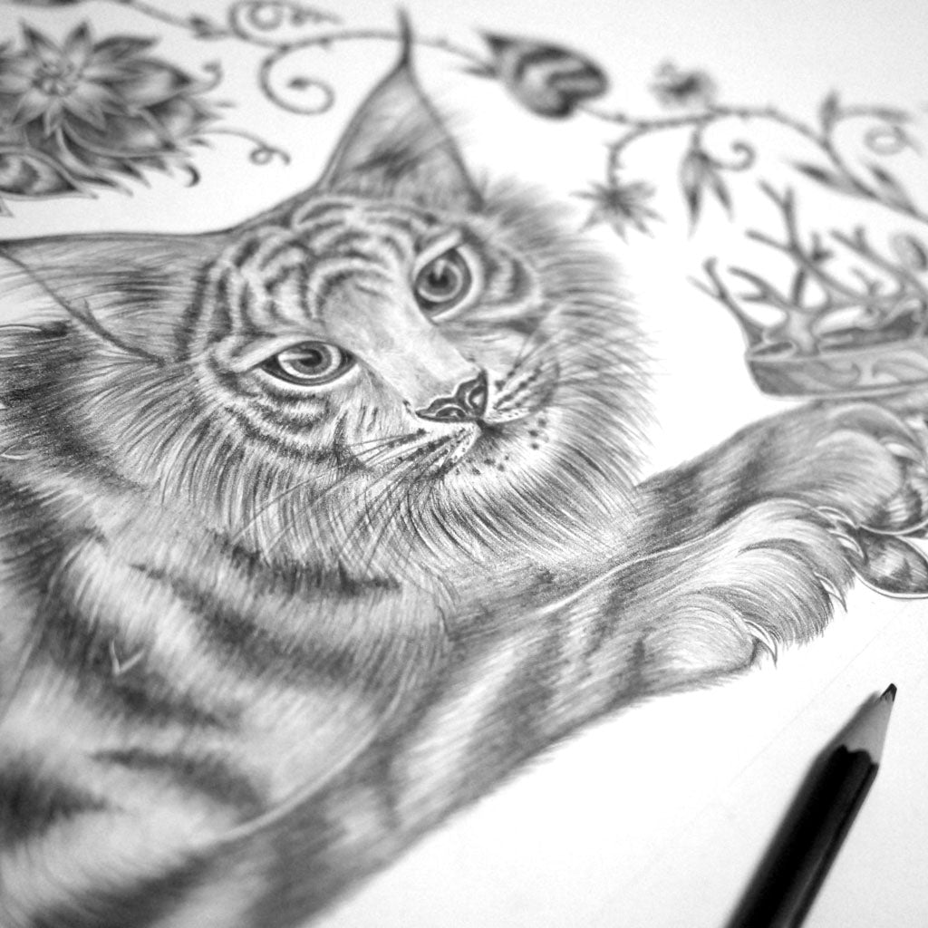 Emma J Shipley pencil drawing for the Shadowcats scarf design