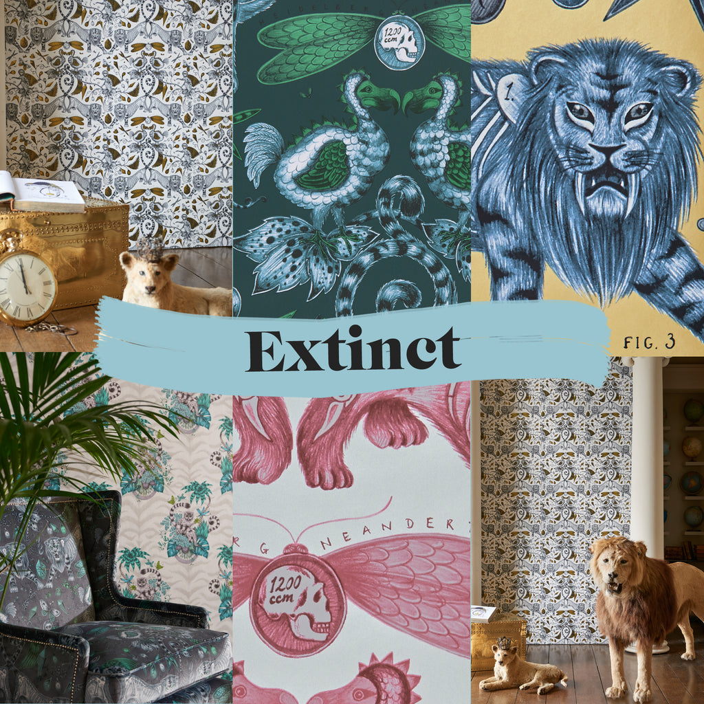 Here are some exclusive previews of the Extinct wallpaper and fabric, and sneak peeks at our magical campaign imagery