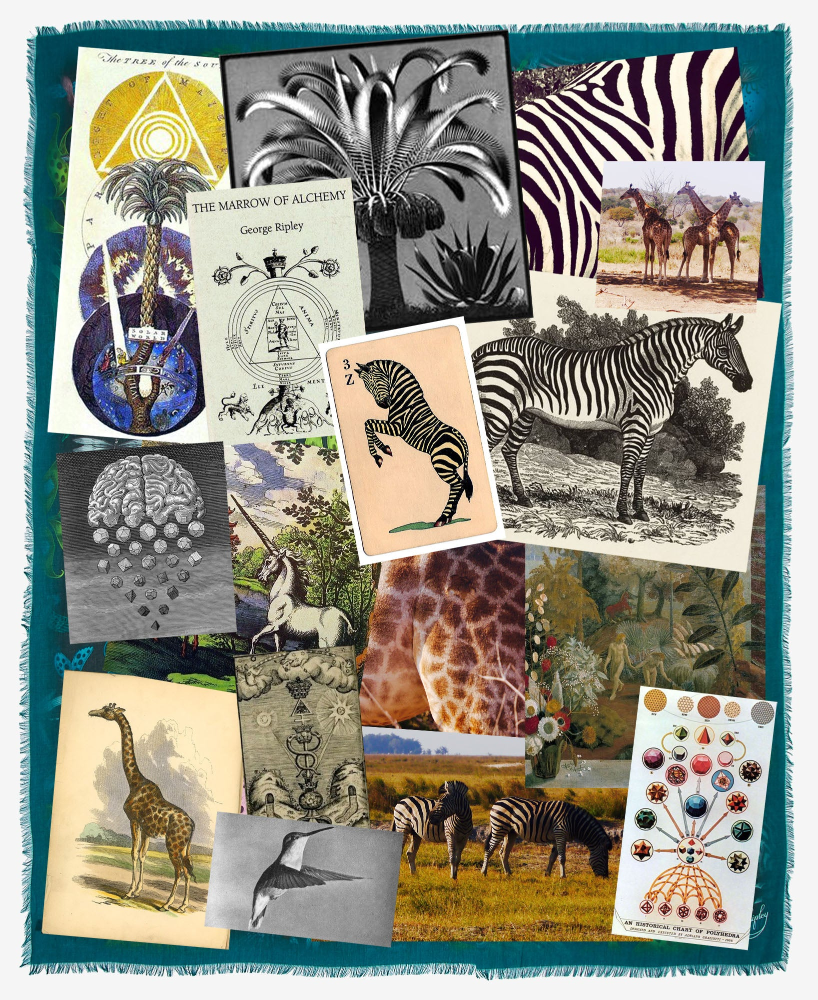 The classic Kruger illustration by Emma J Shipley was inspired by a fantastical safari adventure through South Africa. The creatures and details within the design were influenced by Emma's travels as well as her love of fantasy, mythology and ancient theory