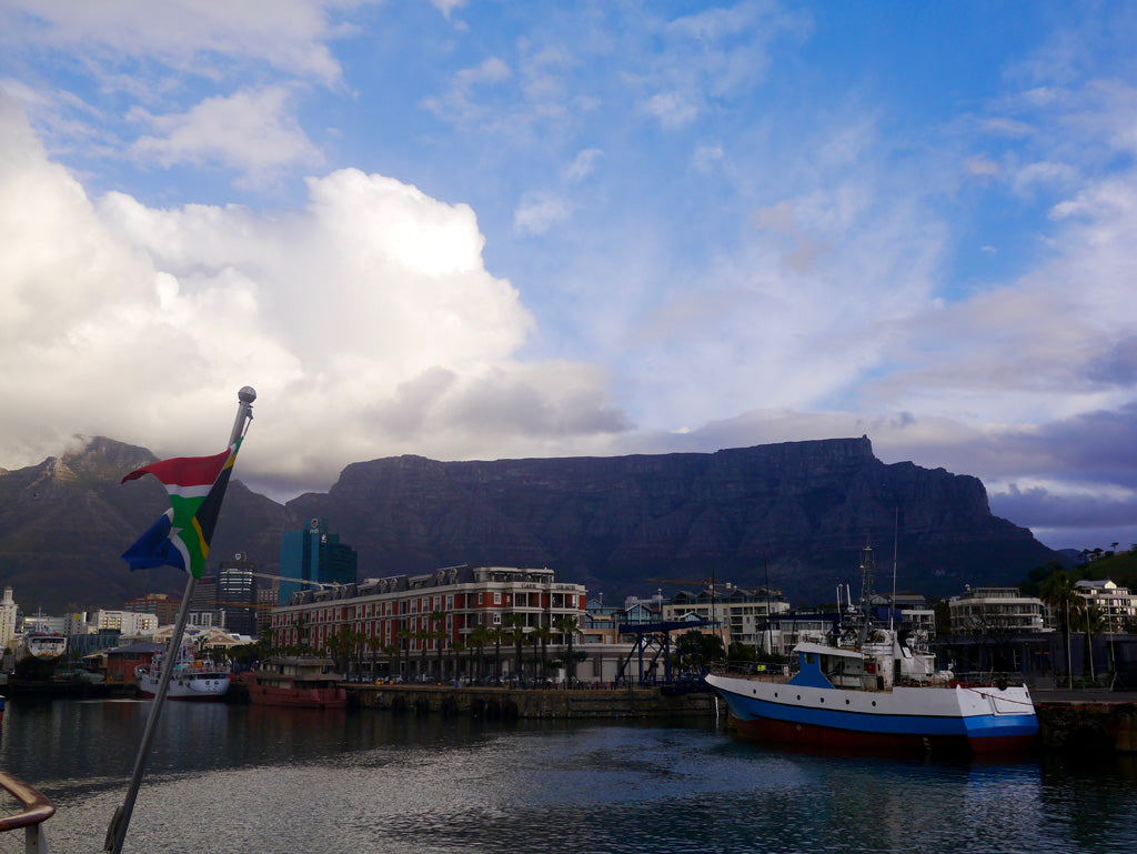 The view from the Waterfront in Cape Town, facing Table Mountain
