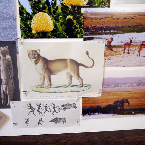 Primary and secondary research from Emma's moodboard while designing the Protea. Key animals from San mythology such as the lion, eland and mantis were key influences to Emma during the design process, as well as the colours and textures of the wilderness area in South Africa