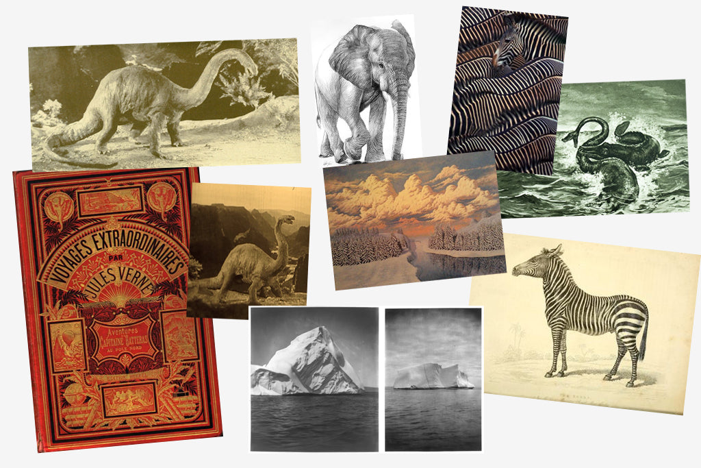 The Explorer collection by Emma J Shipley is a unique scarf range inspired by a range of adventure tales, world travels and magical creatures. Some of Emma's key influences came from silent films of the 1920's, her visit to the African savannahs and the stories of Jules Verne