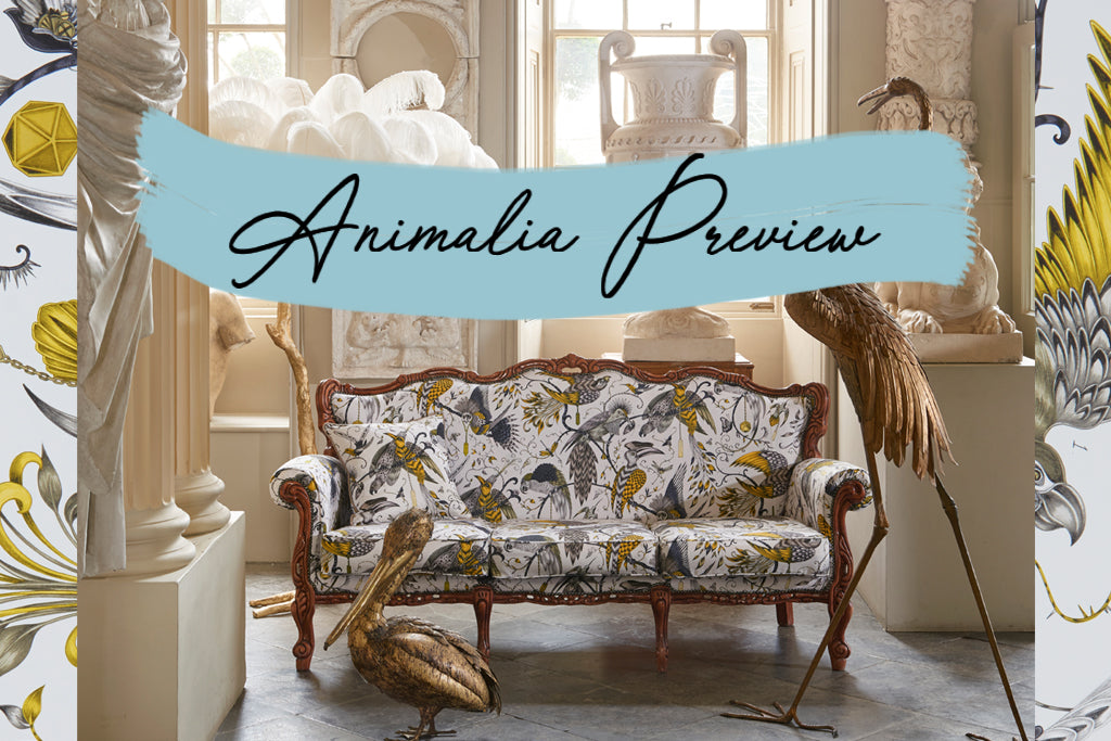 Prowling Jaguars, Soaring Birds And Twisting Foliage Wind Together To  Create A World Of Wonder. Weu0027re Delighted To Reveal An Exciting Preview Of  Animalia, ...