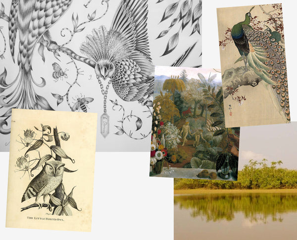 Inspiration behind Emma J Shipley's Audubon print: including botanical illustrations, photographs, romanticist paintings and Victorian geometric posters