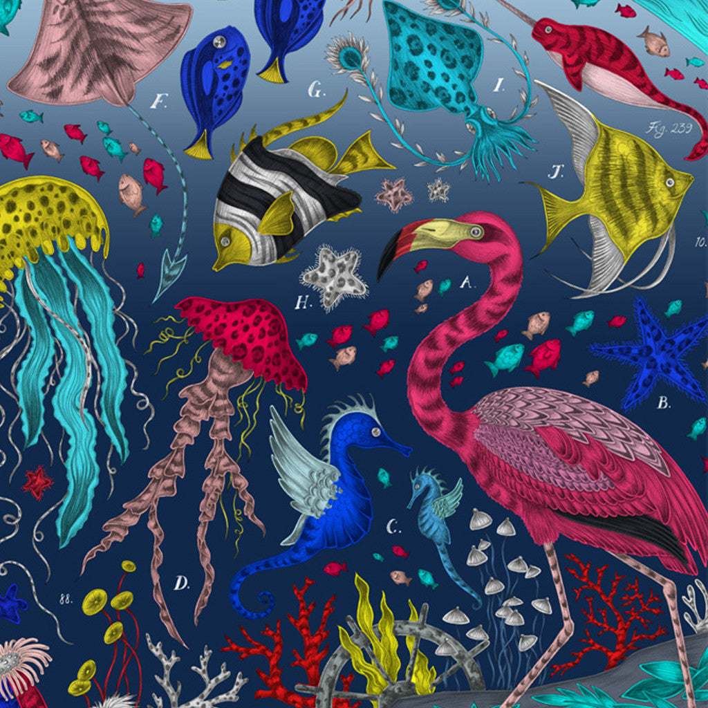 The Neptune design by Emma J Shipley is inspired by scientific illustrations of sea creatures.