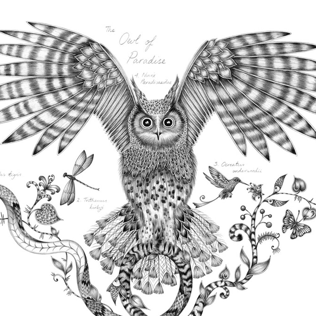 The striking Owl of Paradise print by luxury designer and illustrator Emma J Shipley, featuring an swooping owl surrounded by unusual snakes, hummingbirds and animalistic foliage.