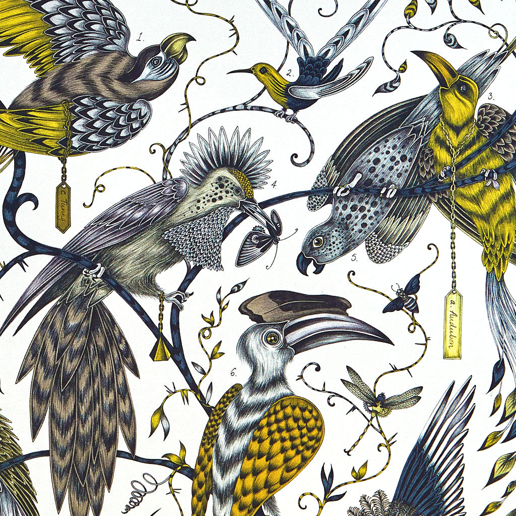 A detailed look at the spots, stripes, feathers and branches that make up this design by Emma J Shipley. This luxurious silk artwork is the perfect piece to style into your home and tones with all colours
